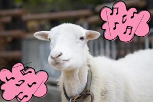 音符と山羊
