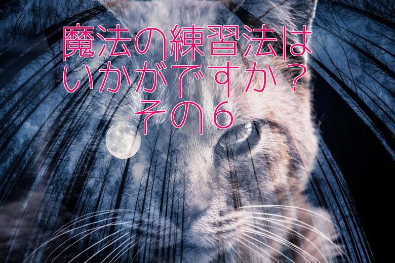 魔法の練習6・猫