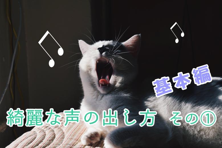 合唱祭でも使える!綺麗な声の出し方~その1 基礎編~