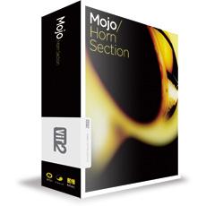 MOJO HORN SECTION
