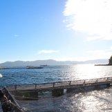 BMSサマーキャンプ2015-海の生簀